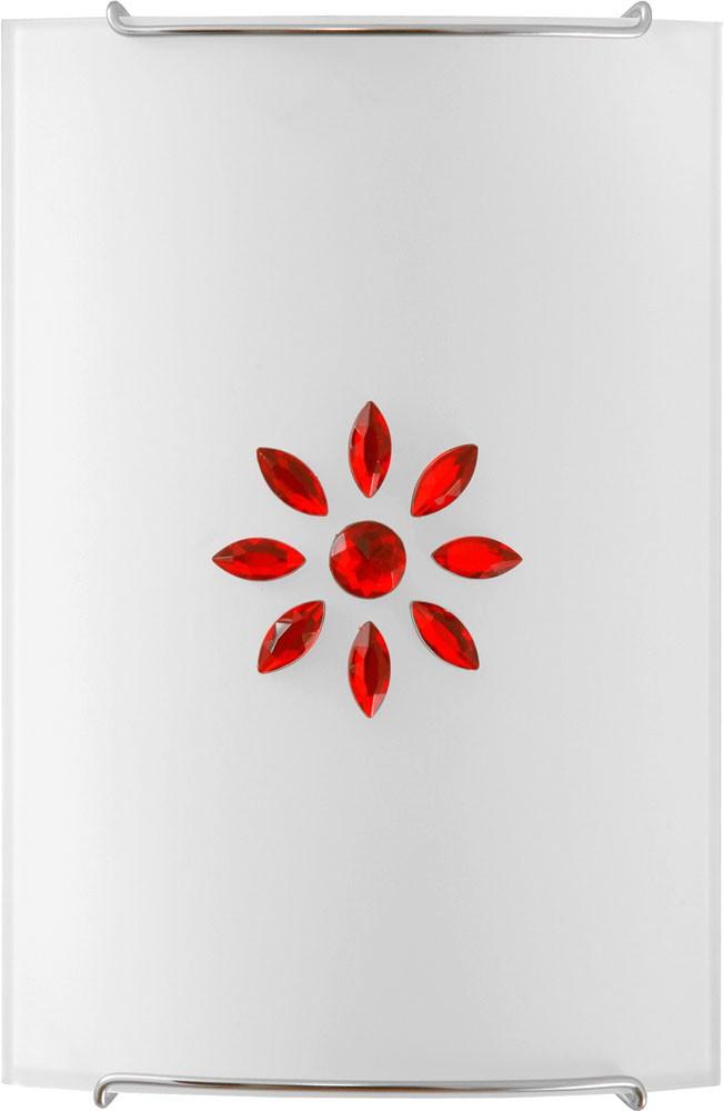 3036 Kuku Red