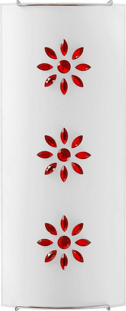 3037 Kuku Red