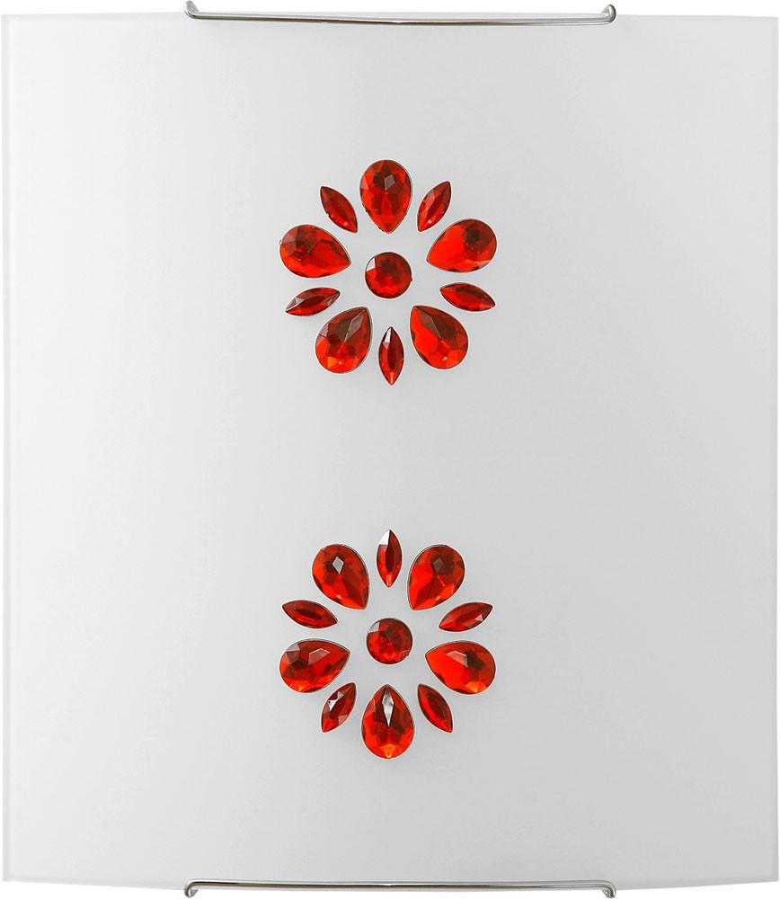 3040 Kuku Red