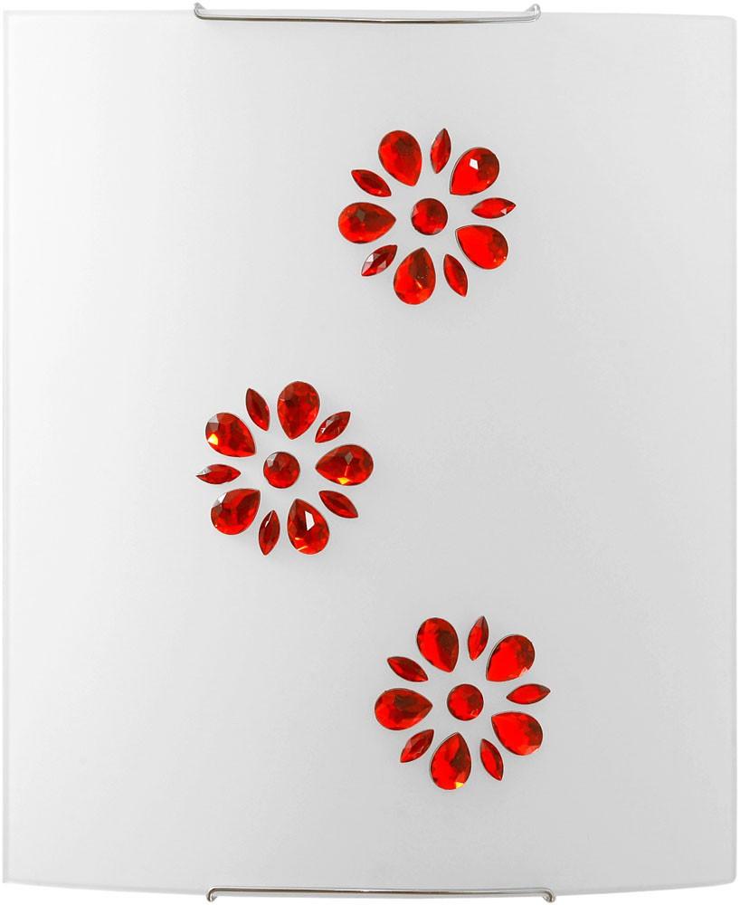 3041 Kuku Red
