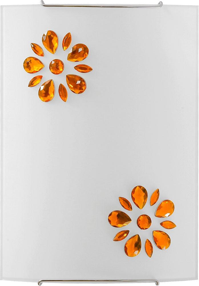 3046 Kuku Amber